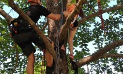 Sofia lyckades klättra högt upp och plinga på två klockor.